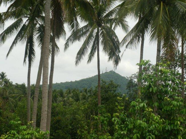 hidden hills farm